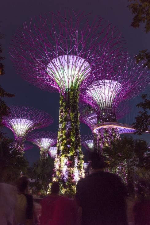 Singapurreise BLOG STUDIO GALO PHOTOGRAPHY